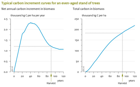 2013-08-00-wageningen-university-and-research-report-climate-effects-of-wood-used-for-bioenergy-typical-carbon-increment-curves-for-an-even-aged-stand-of-trees